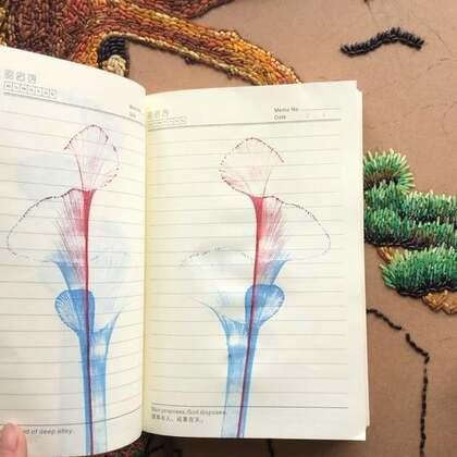 这整个笔记本都被我费了,用绳子拉花颜料不能太多也不能太少,你们慢慢琢磨吧!#精选#@美拍精选官方账号 #我要上热门#@美拍小助手
