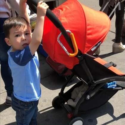 #宝宝##纽约曼哈顿#试镜Hughies好奇纸尿裤,表现很好,回来的路上非要当司机自己推了一路的小推车。监督他推推车比我自己推还累,他推的时候还不准我碰不准我帮他调整方向。每次快要撞到人家了只好不停道歉。现在就这么倔强以后大了怎么办……😭😭😭