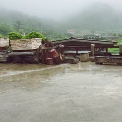 陽明山竹子湖海芋季夢幻秘境鞦韆
