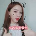 小奶猫🐱求带走#学猫叫手势舞##精选##音乐#
