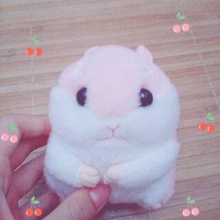 #娃娃##小苍鼠#在旅游买的,是不是很可爱呢?