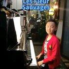 《野花》,送给@吝荧 阿姨,谢谢你一直以来支持与转发。同时也送给大家欣赏!👍👏🙏🌹#钢琴##音乐#。