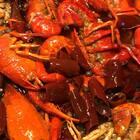 多少人吃了咱家小龙虾以后 给小龙虾味道重新定义了一把[愉快]