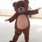 #精选##宠物#熊熊你的眉毛好抢戏哇