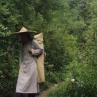 长安雅士薛佩生在终南山子午峪访道,口渴用树叶汲水喝。