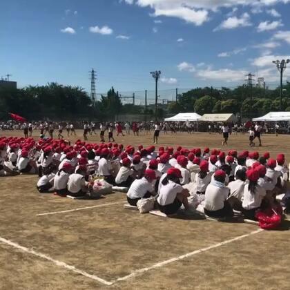 #日本学校运动会##人在日本@海外华人生活##日志#这个漏发了,嘻嘻,想补发出来,以后给儿子看~留给纪念吧!最大声音喊的就是小朋友哦~~@叫我小爱就好!