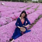 丽江的文海,一片浪漫的花。#带你去旅行##音乐#