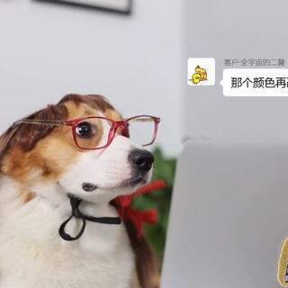 """比做狗更难的是做设计师,Duby哥这次女扮男装豁出去告诉你""""高端""""滴设计师,是个什么样的存在~#柯基小短腿##我要上热门##精选#"""