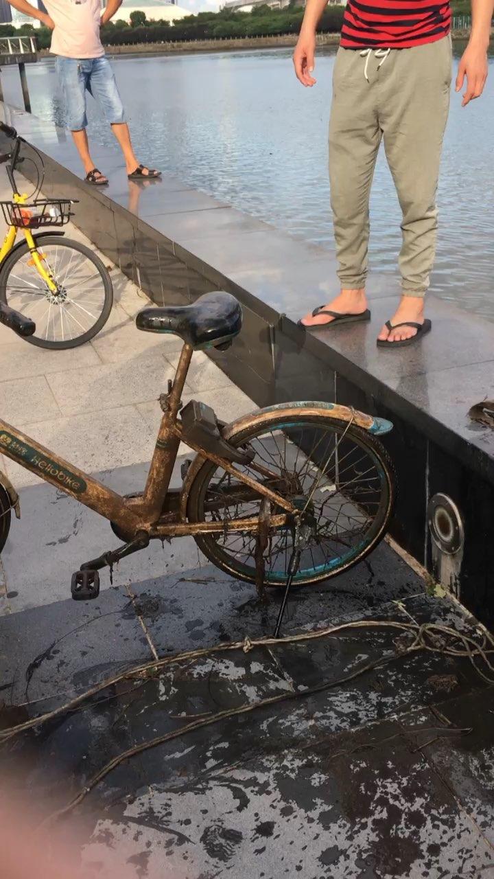 打捞共享单车!