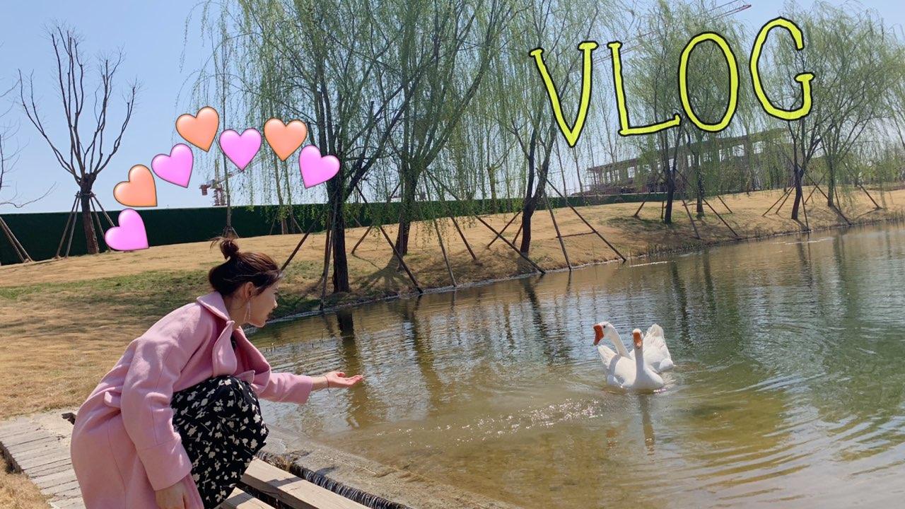 #vlog##日常生活##美食#这个周六有点忙碌🧜♀️郭爷爷陪我去项目加班 回来后和朋友约了个火锅🍲又跑来唱歌🎤啦 大家周六快乐哦 他们在唱歌我在剪辑视频 你们不点赞是不是过不去过不去!!!@美拍小助手