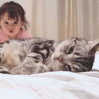 有爱?#吸猫所##宠物#