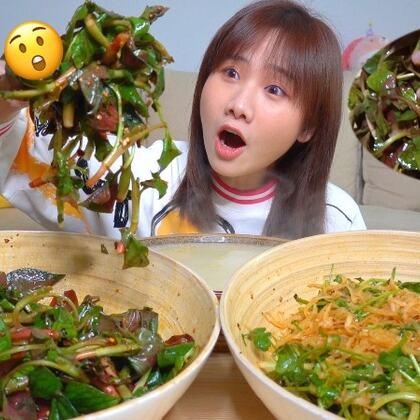 兩盆一飯說來就來,密媽出品我最愛涼拌菜,折耳根魚腥草警告!#密子君##美食##吃秀#