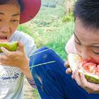 孩子在西瓜地好開心,不小心把西瓜摔裂,直接掰開吃 #我要上熱門##美食##農村#